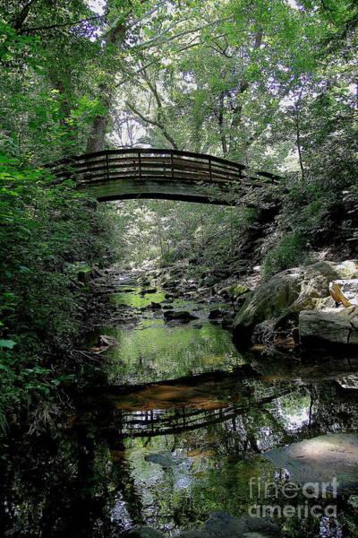 Photograph - Bridge Reflections by Allen Nice-Webb
