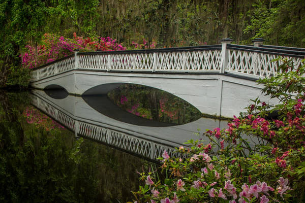 Photograph - Bridge Reflections by James Woody