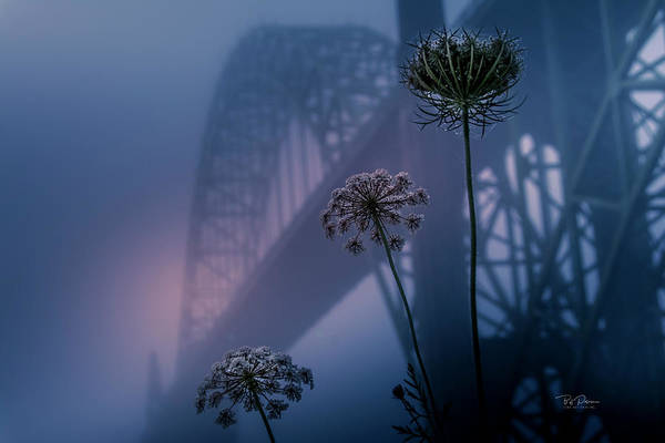 Photograph - Bridge Scape by Bill Posner