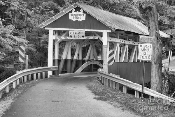Garrett County Wall Art - Photograph - Bridge Through The Somerset Forest Black And White by Adam Jewell