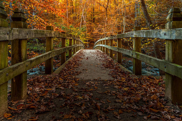 Photograph - Bridge To Enlightenment 2 by Ed Clark