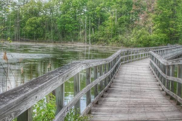 Photograph - 3010 - Linear Park Bridge Over Wetlands II by Sheryl Sutter