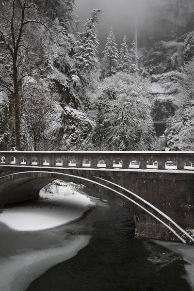 Photograph - Bridges Of Multnomah Falls by Wes and Dotty Weber