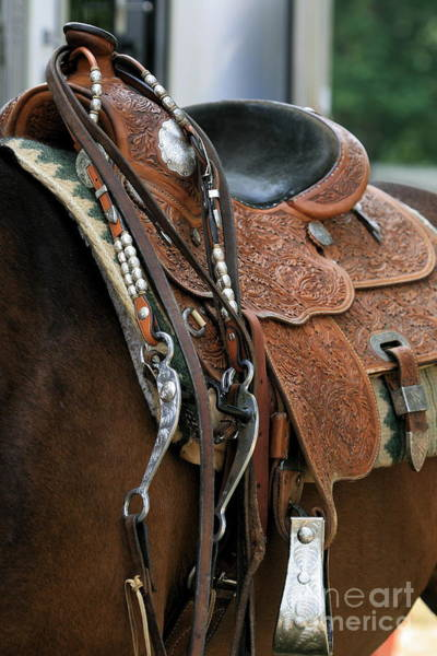 Photograph - Bridle And Saddle Detail by Angela Rath