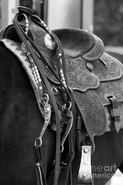 Photograph - Bridle And Saddle Detail In Black And White by Angela Rath