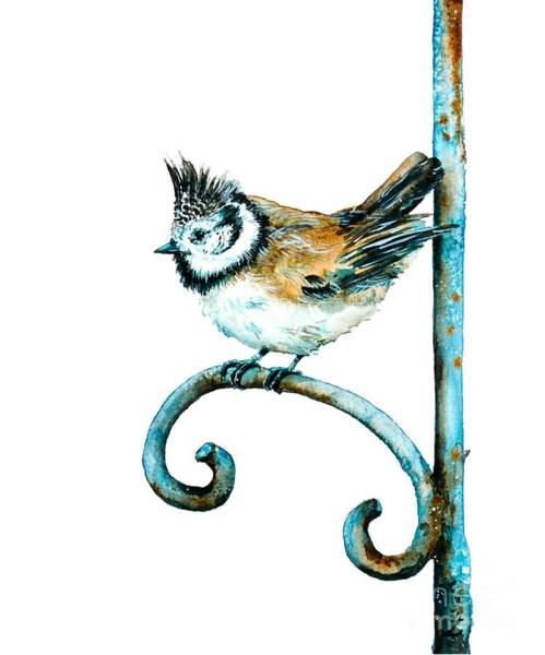 Nature Knows Best Wall Art - Painting - Bridled Titmouse by Zaira Dzhaubaeva
