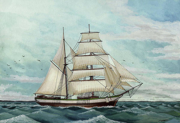 Wall Art - Drawing - Brig-schooner by The Collectioner