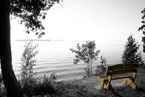 Photograph - Bright Bay Bench by Dylan Punke