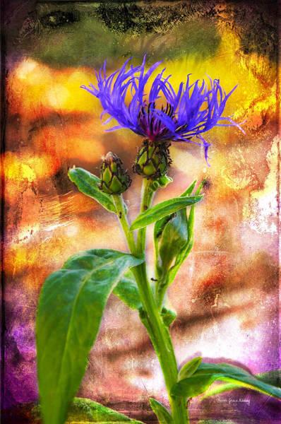 Photograph - Bright Beauty by Randi Grace Nilsberg