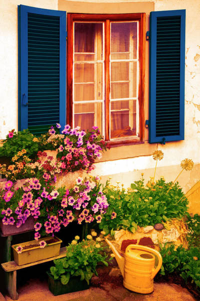 Photograph - Bright Blue Shutters In The Garden by Debra and Dave Vanderlaan