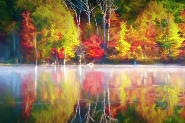 Photograph - Bright Colorful Reflections by Randall Nyhof