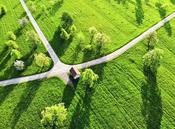 Photograph - Bright Green Spring Meadow Aerial Photo by Matthias Hauser