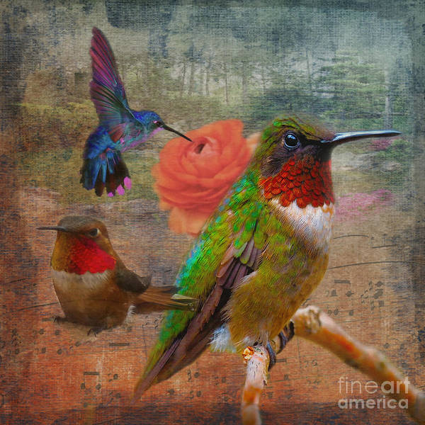 Digital Art - Bright Note In The Song Of Life 2015 by Kathryn Strick