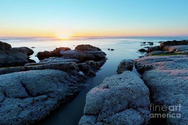Wall Art - Photograph - Bright Sunset by Masako Metz