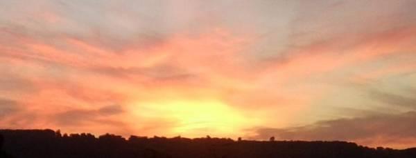 Wall Art - Photograph - Bright Sunset On Ranmore Close Up by Julia Woodman