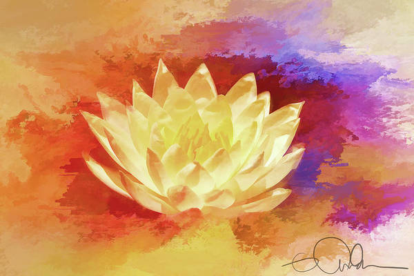 Digital Art - Bright Water Lily by Gloria Anderson