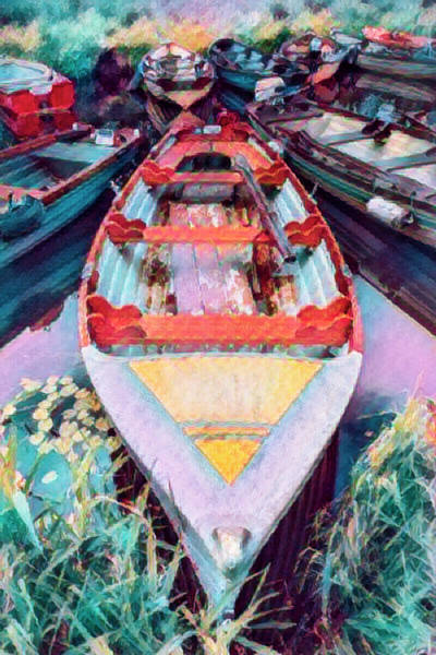 Photograph - Bright Watercolors Of Summer Oil Painting by Debra and Dave Vanderlaan