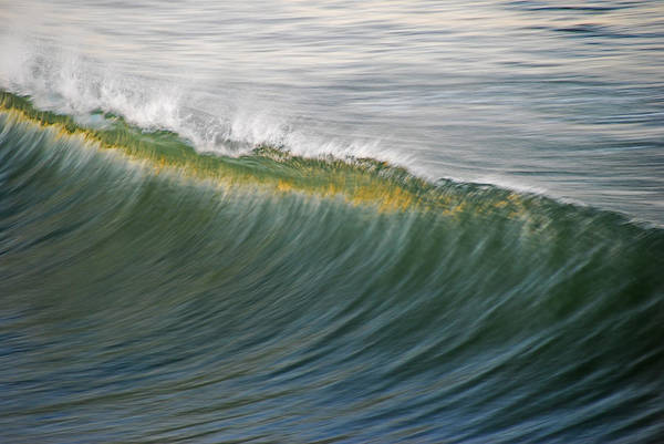 Wall Art - Photograph - Bright Wave by Kelly Wade