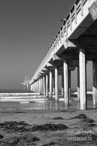 Photograph - Bright White Scripps  by Ana V Ramirez