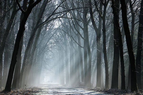 Wall Art - Photograph - Brighten Up The Darkness by Martin Podt