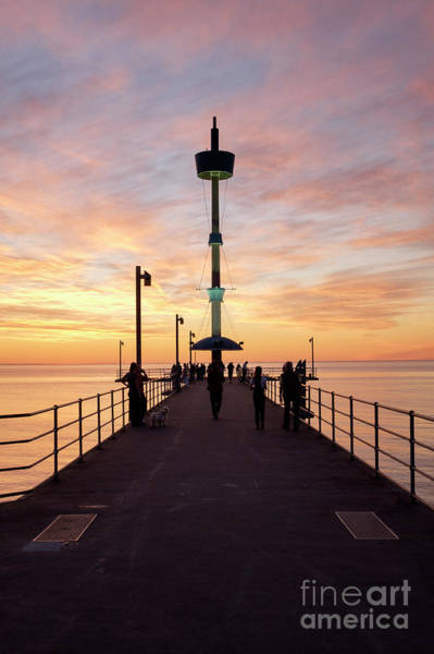Photograph - Brighton Jetty Sunset by Ray Warren
