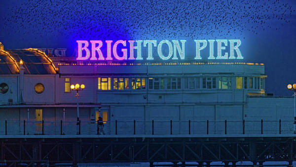 Photograph - Brighton Pier And The Starlings by Chris Lord