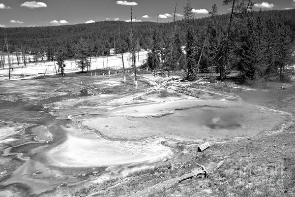 Yellowstone Caldera Photograph - Brilliant Colors At Firehole Spring Black And White by Adam Jewell