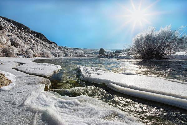 Wall Art - Photograph - Brilliant Winter Sun by Leland D Howard