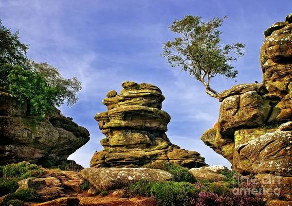 Photograph - Brimham Rocks Yorkshire by Martyn Arnold