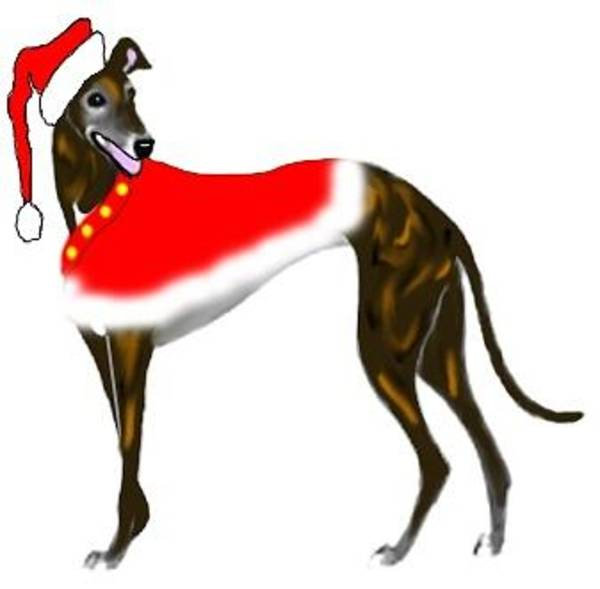Wall Art - Digital Art - Brindle Xmas by Jennifer Howard