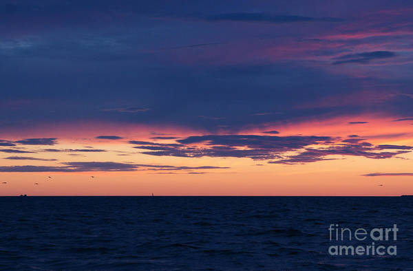 Photograph - Bring Me The Sunset by Linda Shafer