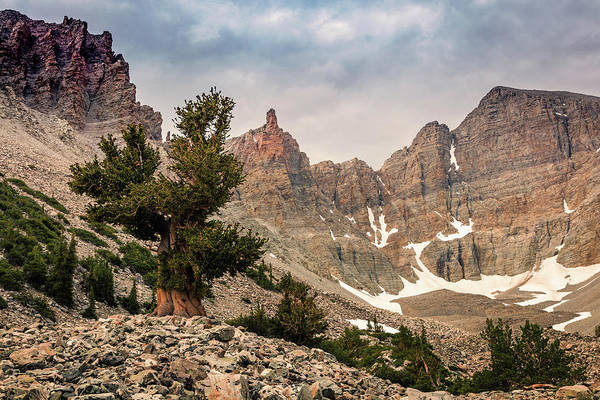 Awe Photograph - Bristlecone Cirque by Johnny Adolphson