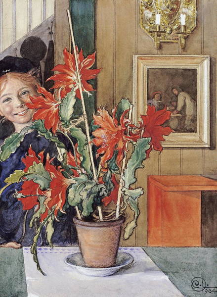 Wall Art - Painting - Brita S Cactus by Carl Larsson