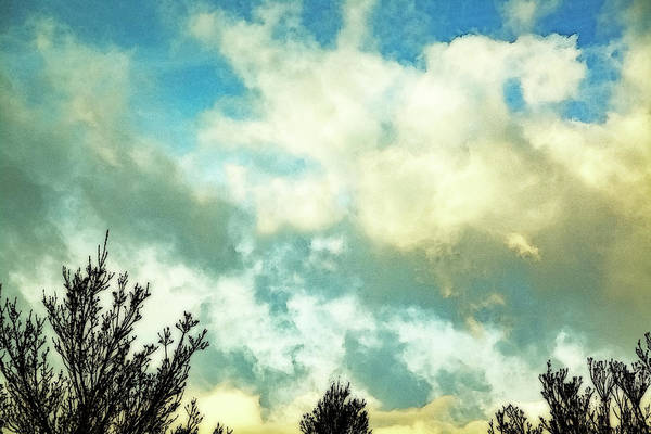 Wall Art - Photograph - Brite Clouds by Nancy Marie Ricketts