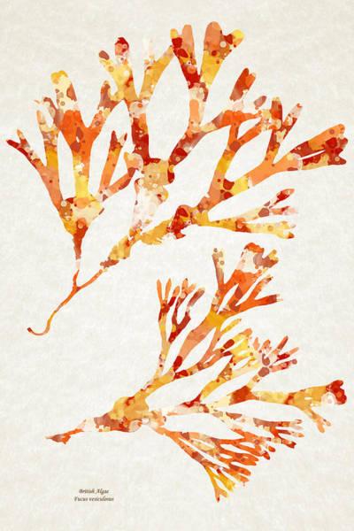 Mixed Media - British Algae Abstract Fucus Vesiculosus by Christina Rollo