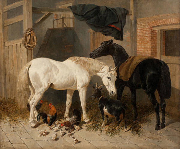 Wall Art - Painting - British Barn Interior With Two Horses by John Frederick Herring