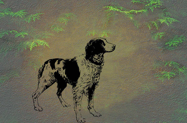 Mixed Media - Brittany Spaniel by Movie Poster Prints