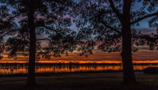 Photograph - Brittlebank Park Silhouette - Charleston Sc by Donnie Whitaker