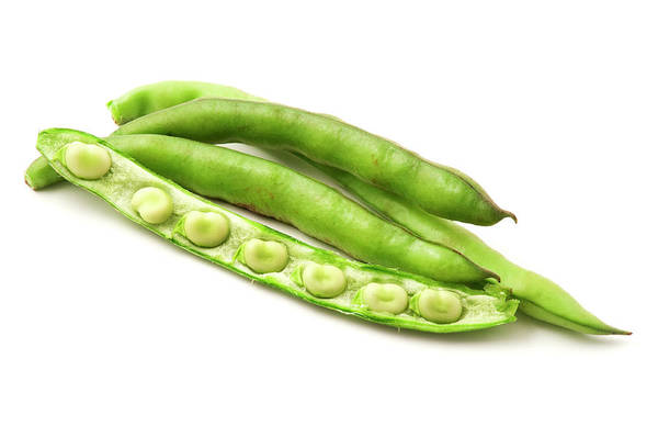 Photograph - Broad Beans  by Fabrizio Troiani