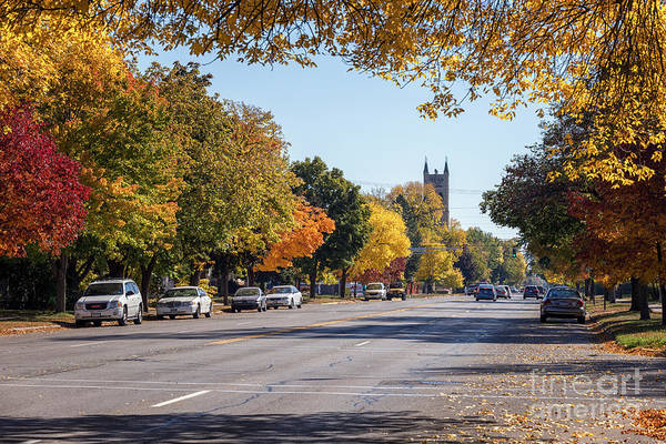 Photograph - Broadway In The Fall by Kari Yearous