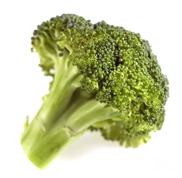 Vegetal Photograph - Broccoli Cabbage by Gerard Lacz