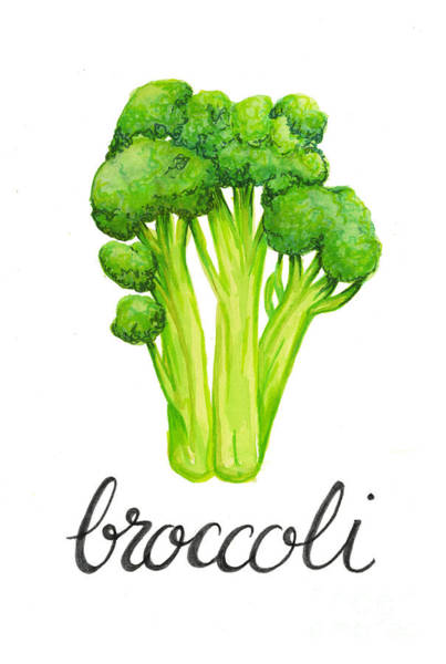 Painting - Broccoli by Cindy Garber Iverson