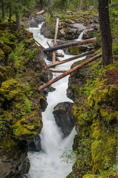 Rogue River Wall Art - Photograph - Broiling Rogue Gorge by Greg Nyquist