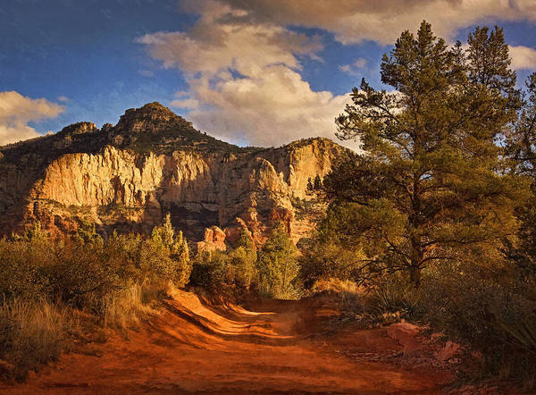 Photograph - Broken Arrow Trail Pnt by Theo O'Connor