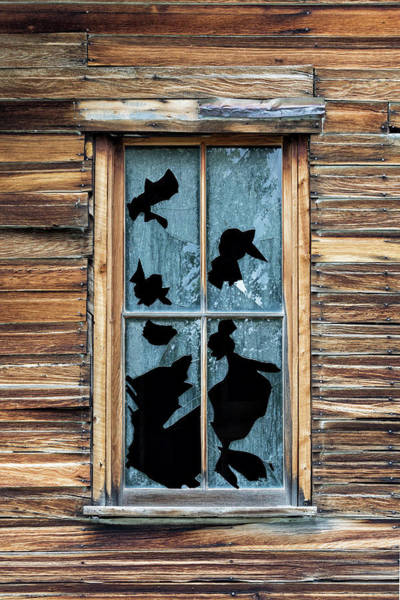 Photograph - Broken Dreams by Denise Bush