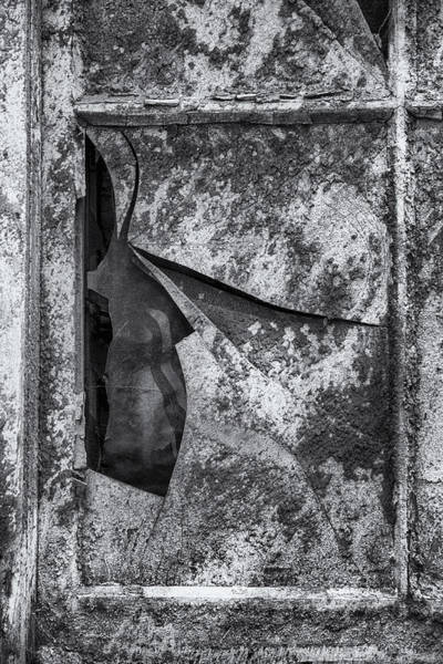 Photograph - Broken Window by Tom Singleton