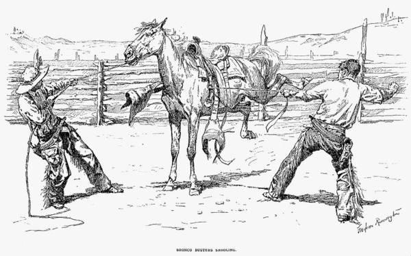 Remington Photograph - Bronco Busters Saddling by Granger