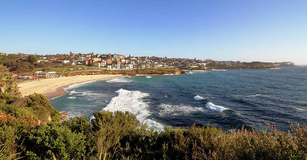 Photograph - Bronte Beach by Nicholas Blackwell