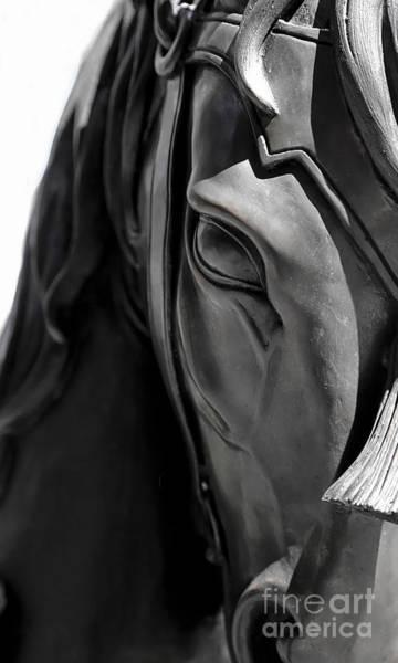 Photograph - Bronze Horse by Sue Harper