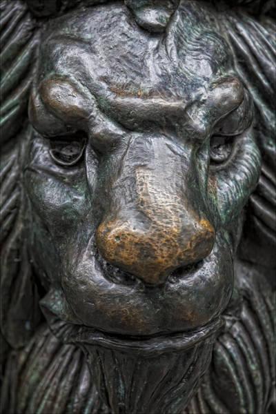 Bronze Lion Art Print by Robert Ullmann
